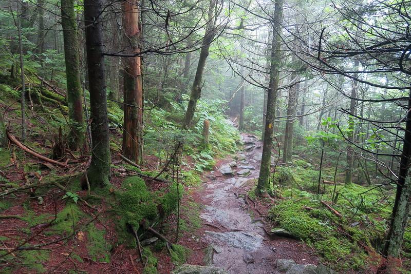 Underwood Trail -- 5,640'