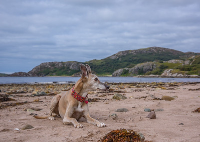 Wester Ross HOliday Day 2: Gruinard Bay
