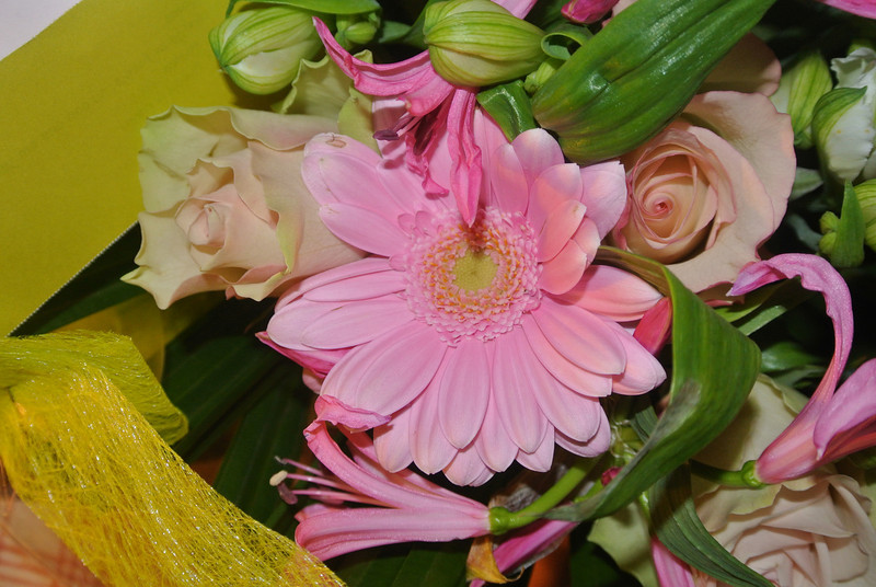 'RONNY & PASCAL' Bloemen voor Maintje 2012-11-11 09.JPG