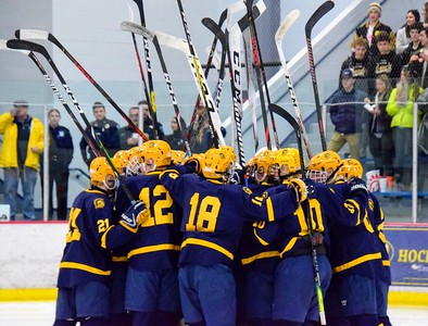 HS Sports - Division 2 Trenton Livonia Stevenson Hockey
