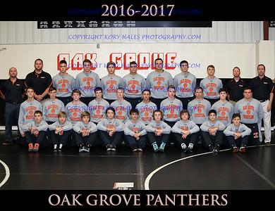 2016-2017 OGHS Wrestling