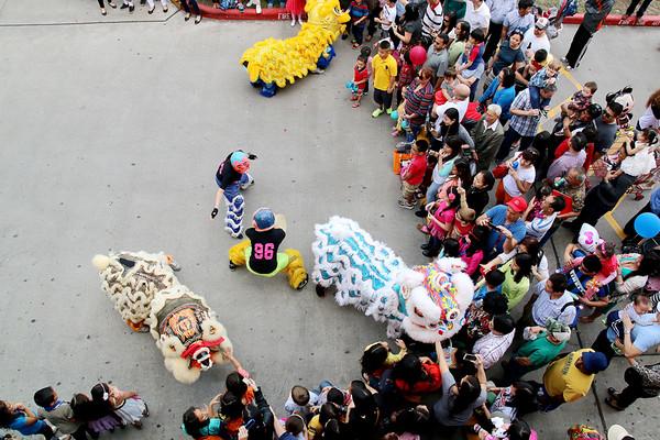 20150222 CNY @ Viet Hua