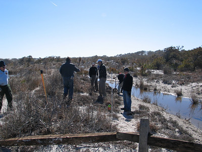 Assateague Island Service Project