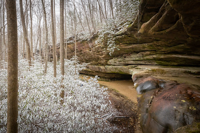 Snow day at Pickett CCC State Park