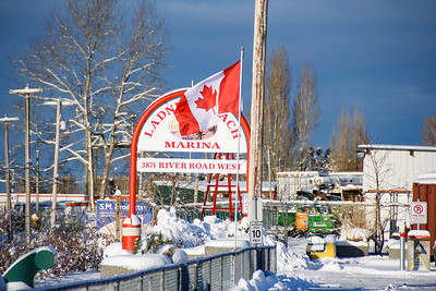 Ladner Reach Marina Public Folder