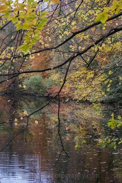 Knaresborough 3 Nov 18-22.jpg