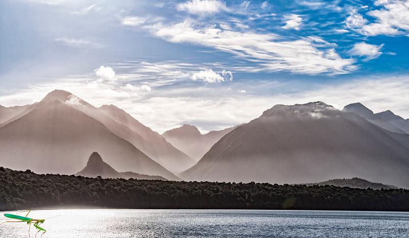 Lake Manapouri Fjordland