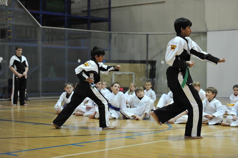 2015-12-18_HAC_KarateBeltPromotion@HockessinDE_17.jpg