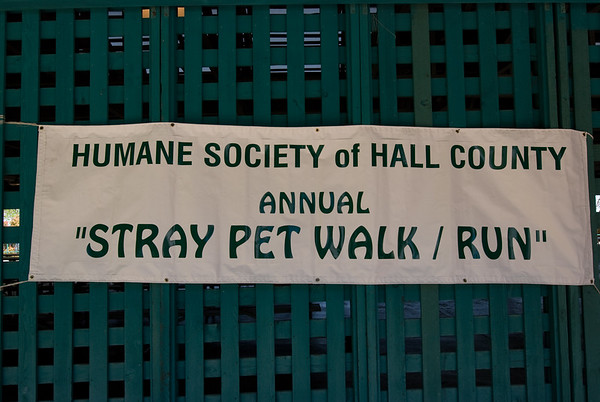2008 Stray Pet Strut - Dogs and Owners