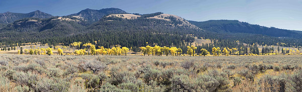 Yellowstone National Park - September 2014