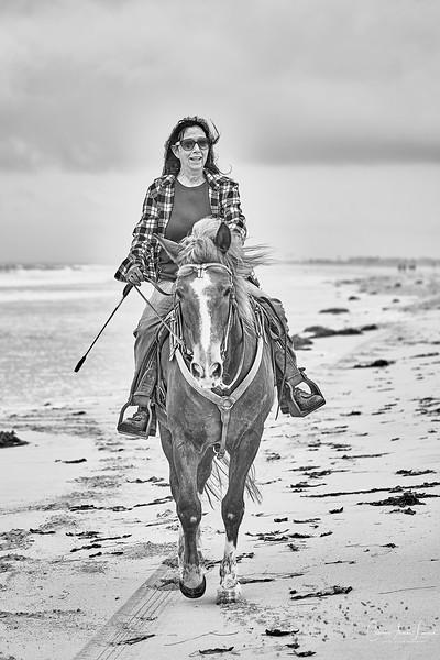 _DSC20360131@Catherine Aranda-LearnedOceanMeadowview©CAL..jpg