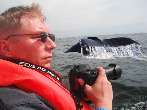 Whale Photo Safari Adventure, Puerto Vallarta Mexico - January 2011