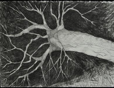 David Dew Bruner, Sketches
