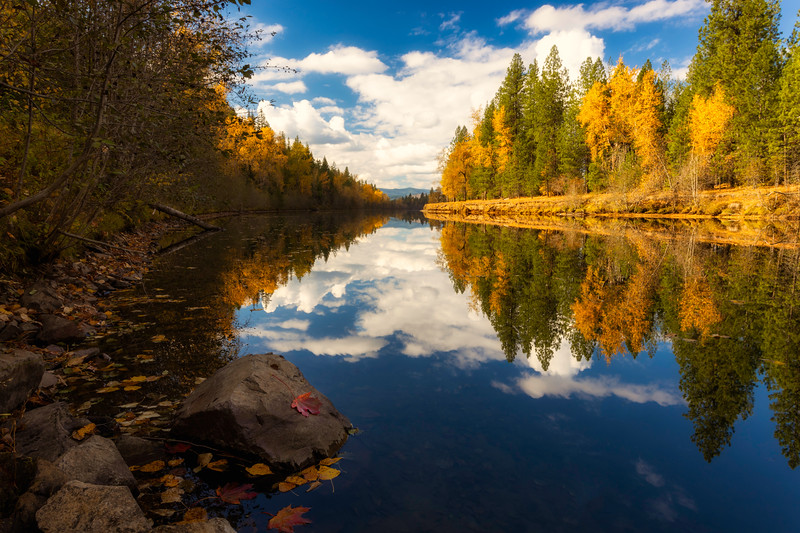 ~Coeur D Alene River~
