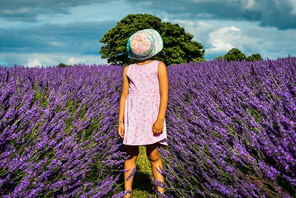 Layla Lavender