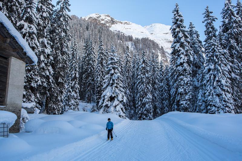 Rheinwald-Winter-D-Aebli-058.jpg