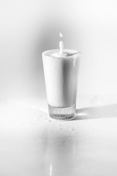 20200208-bw-milksplash-0262.jpg