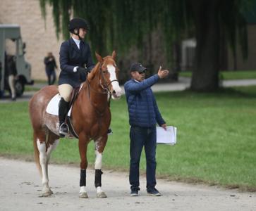 Princeton Equestrian Show