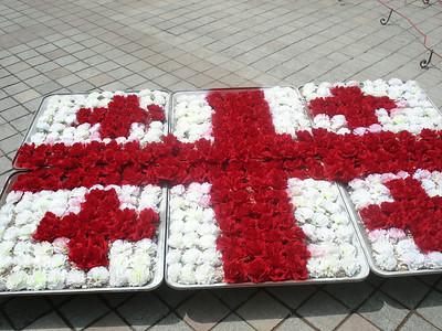 Flag flower pots