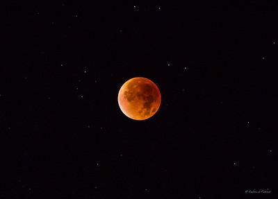 Lune rousse 280915