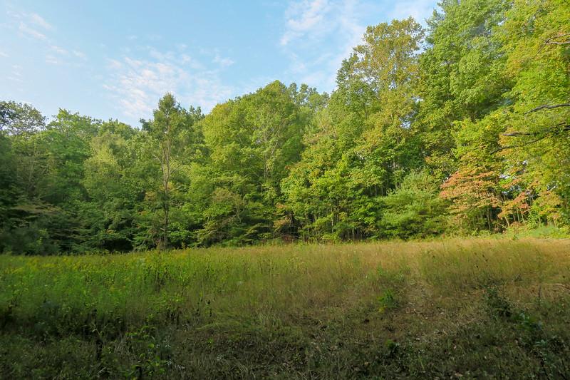 Deerfield Loop Trail (#335)