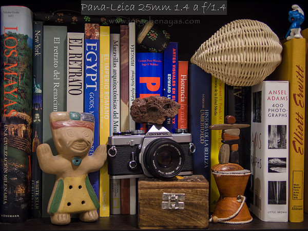 Leica DG Summilux 25mm f1.4 Review appendix