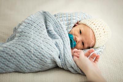 Vogel [CT] Baby Shoot