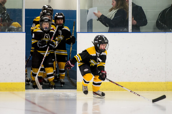 Woodhaven Bruins