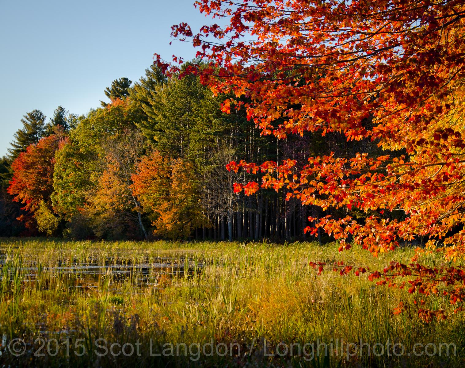 (c) 2015  Scot Langdon - Longhillphoto com-5905