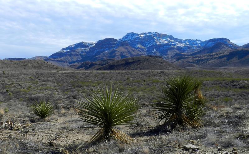 Pinto Canyon view4.jpg