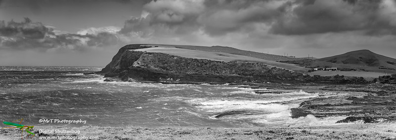 Curio Bay on a windy summer day