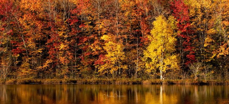 Thorton Lake Fall Morning