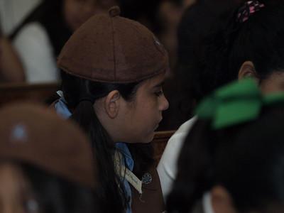 2009 Scout Mass