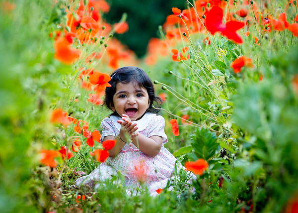 Kaira Poppies