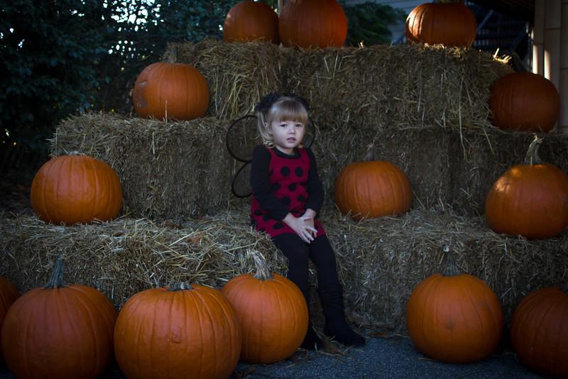 Bodaford Halloween