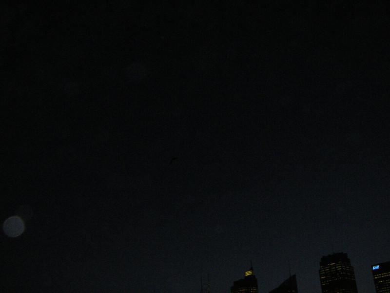 Sydney 231.JPG
