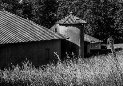 Crane Estate - Essex County Safari