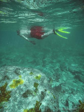 Antiqua Snorkel