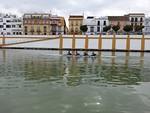Sevilla-10.jpg