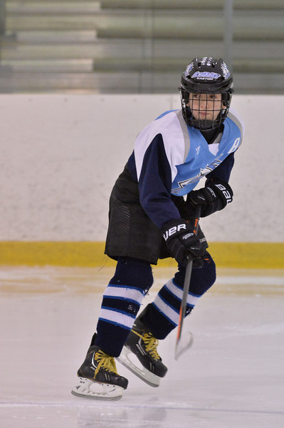 Summit Ice Dogs - Squirt B1 - 2-6-14