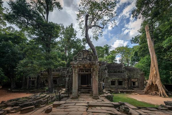 Angkor: Ta Prohm