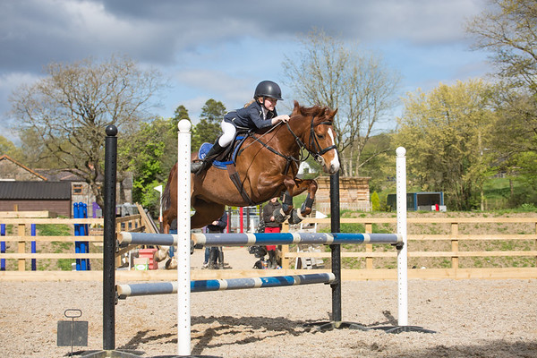 Showjumping 17th April