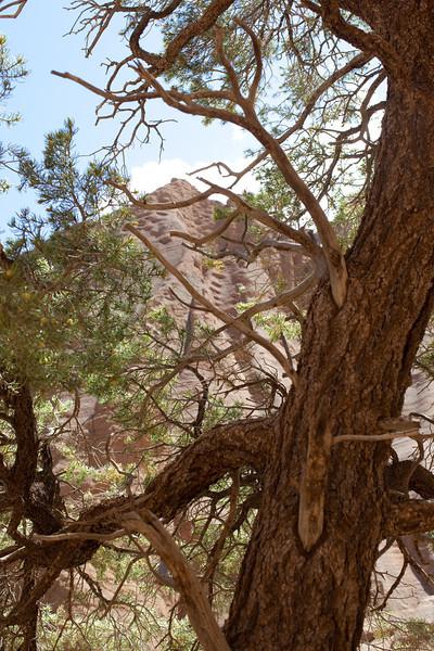 Arizona2014-105.jpg