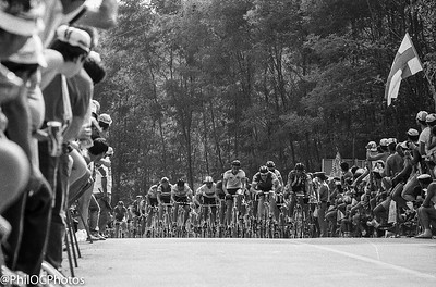 World Road Championships 1985