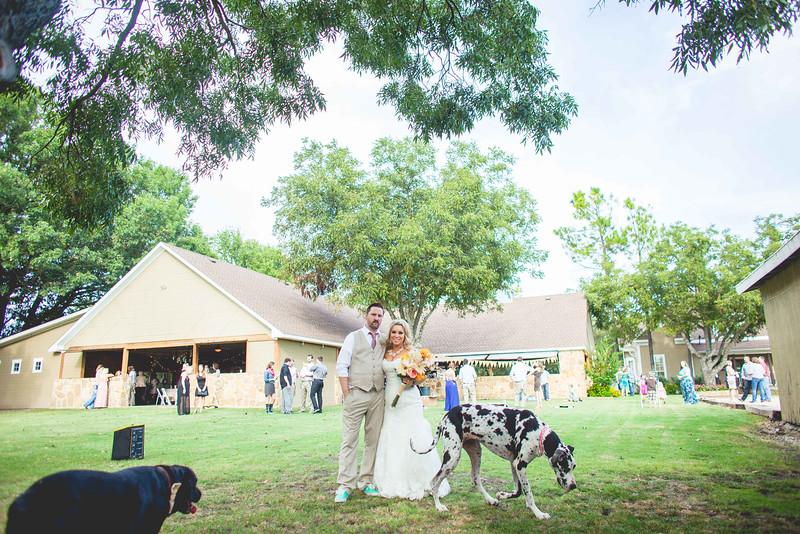 2014 09 14 Waddle Wedding - Reception-653.jpg