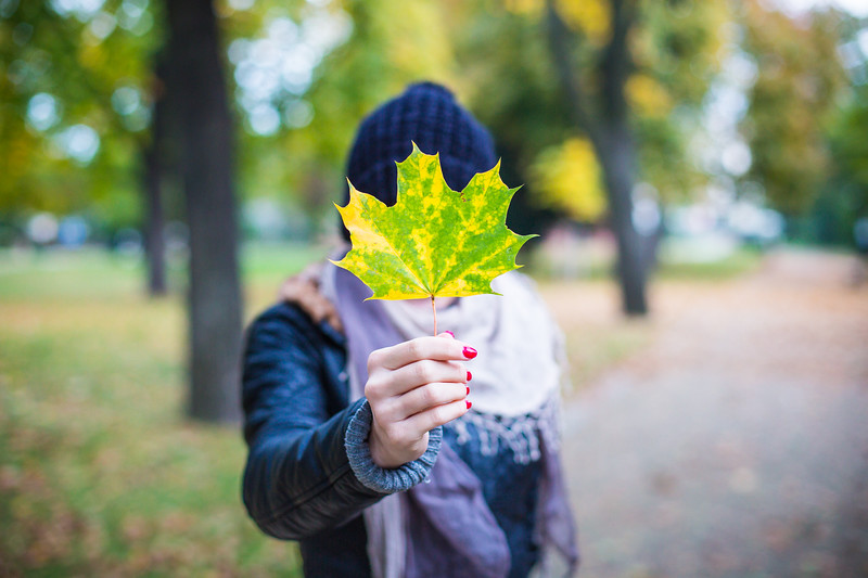 young-girl-holding-autumn-colored-maple-leaf-picjumbo-com.jpg