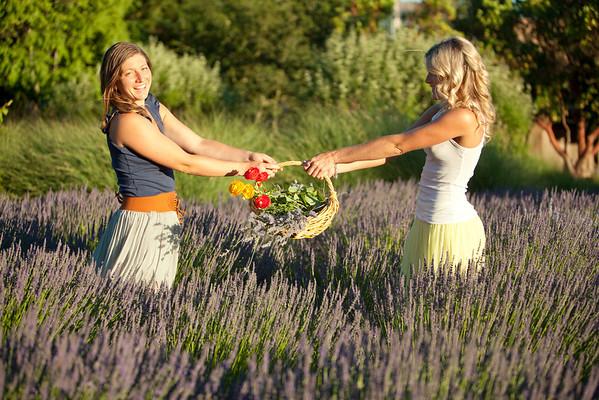 Lavender Honeys
