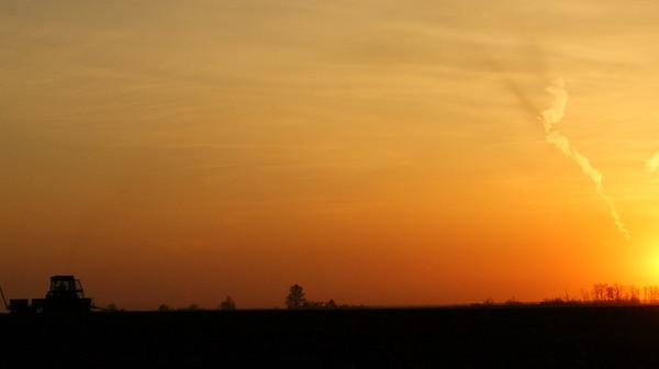 Seeding into Sunset