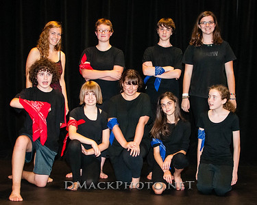 Shakespeare's Theatre Camp 2013