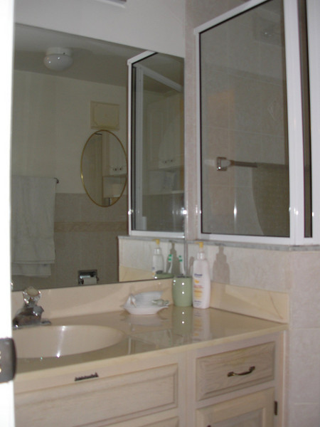 Vanity and shower for Guest bathroom
